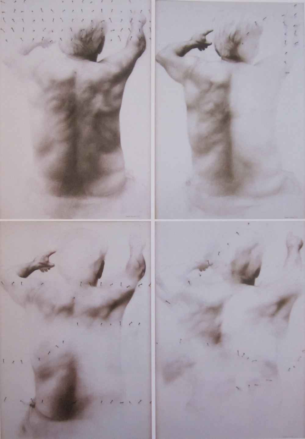 (100 cm x 140 cm each one) 9.000 - €