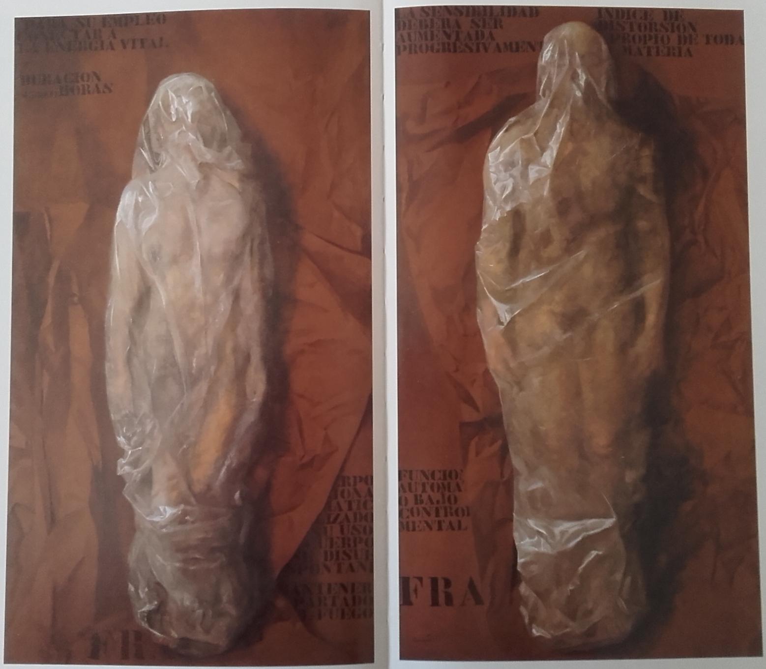 (100 cm x 200 cm) 10.000 € los dos